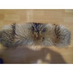 Finn raccoon collar / headband